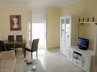 BRIGHT WITH LIFT A/C AND WIFI - Cadiz vacation rentals