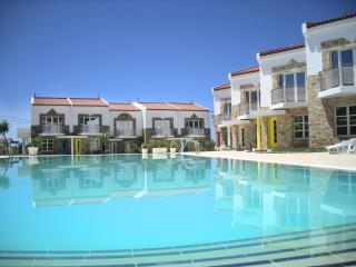 Grapevines Villa Saffia with pool - Makry-Gialos vacation rentals