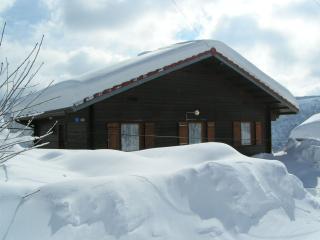 chalet les bouleaux - La Bresse vacation rentals