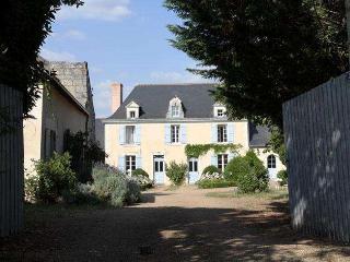Maison du Manoir  des Rosiers - Noyant-la-Plaine vacation rentals