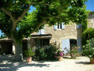 Mas Saint Pierre, près de L'Isle-sur-la-Sorgue - Les Vigneres vacation rentals