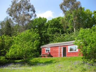 'Holly Lodge' at Cutkive Wood - Liskeard vacation rentals
