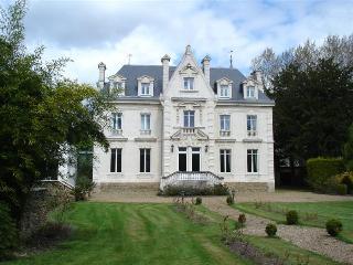 Chateau, La Fleche, Sarthe - La Flèche vacation rentals