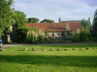 Boar Cottage Bellerby Leyburn - Bellerby vacation rentals