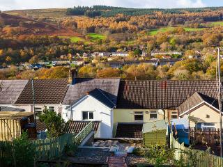Bwthyn Pen y Fan - Merthyr Vale vacation rentals