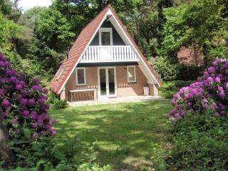 Bungalow Motief - Harfsen vacation rentals