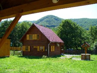 Cabin in Praid - Praid vacation rentals