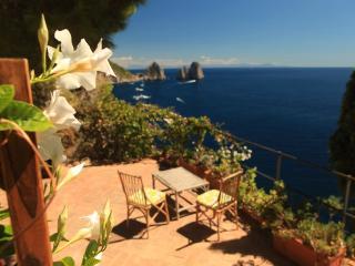Villa Kronberg - Capri vacation rentals