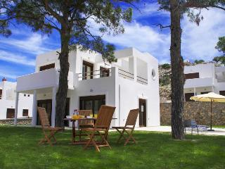 Pefkos Hillside Villas - Pefkos vacation rentals