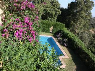 Luxury Villa with pool+Jacuzzi - Alhaurin el Grande vacation rentals
