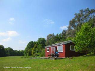 'Oak Lodge' at Cutkive Wood - Liskeard vacation rentals
