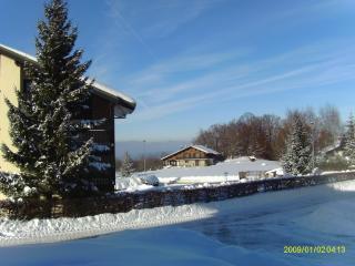 Chardon Bleu - Thollon-les-Memises vacation rentals