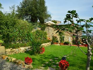 Delicious country house in Chianti  2 - San Casciano in Val di Pesa vacation rentals