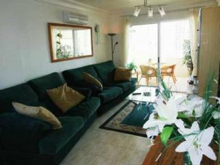 Los Olivos  Apartments - Benidorm vacation rentals