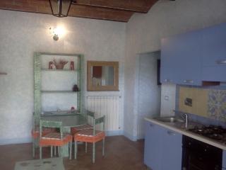 Cozy one bedroom flat near Volterra - Volterra vacation rentals