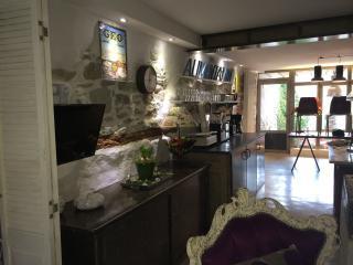 l'atelier des poulacres - Conques-sur-Orbiel vacation rentals