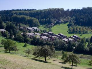 Black Forest Apartment - Baden-Baden vacation rentals
