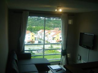 PEREIRA 1bed/1bath furnished condo - Pereira vacation rentals