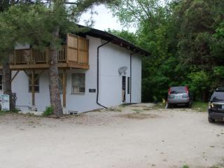 Large Ski-Chalet - Grey County vacation rentals