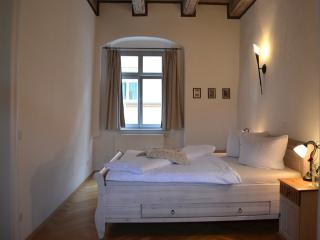 LLAG Luxury Vacation Apartment in Pirna - 1033 sqft, high-quality furnishing, historic (# 2486) - Saxony vacation rentals