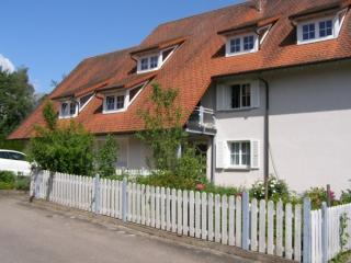 Vacation Apartment in Villingen-Schwenningen - 700 sqft, quiet, cozy, modern (# 3875) - Villingen-Schwenningen vacation rentals