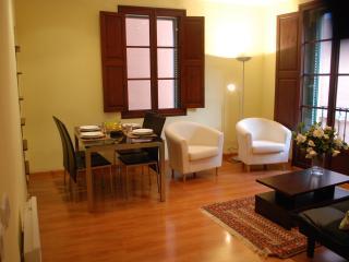 Faboulous in Old centre of Palma - Palma de Mallorca vacation rentals