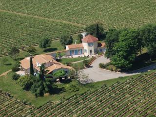 Gîte Les Vignes de Michelet - Damazan vacation rentals