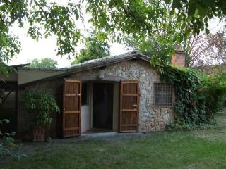 Siena - Sovicille vacation rentals