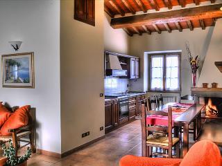 BUCCIA NERA trilo2 - Arezzo vacation rentals