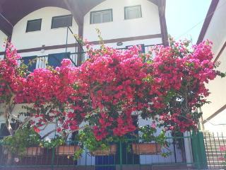 Villa Montoro - Sperlonga vacation rentals