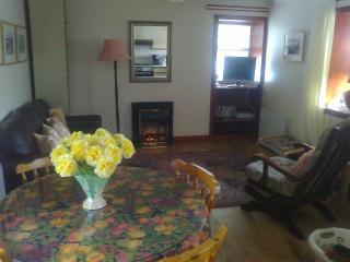 Stone Cottage - Newton Stewart vacation rentals