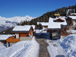 Le Dahu - Vallandry vacation rentals