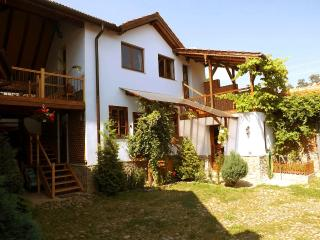 • CASA PELU • farmhouse in a Carpathian village - Sibiu vacation rentals