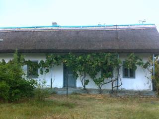 Danube Delta House - Tulcea vacation rentals