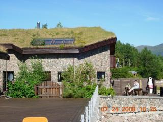 Eriks Viking Lodge 1 - Sunndalsora vacation rentals