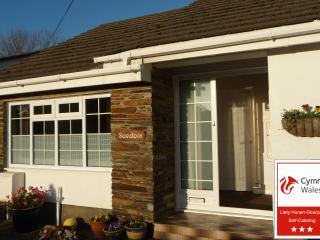 SUEDOIS - Saundersfoot vacation rentals