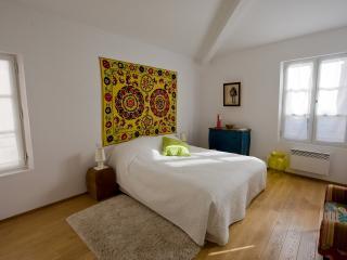 Superbe duplex 12 pl du Forum - Arles vacation rentals