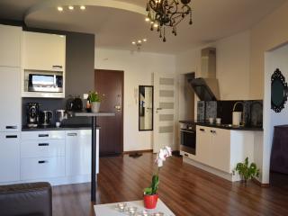 Luxury Modern Central Riversid - Krakow vacation rentals