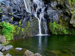 Hortensias villa V2 - Azores vacation rentals