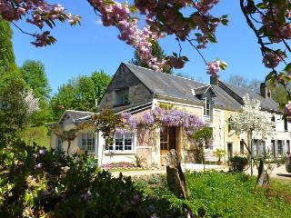 L'île ô reflets - Moulin - Vendome vacation rentals