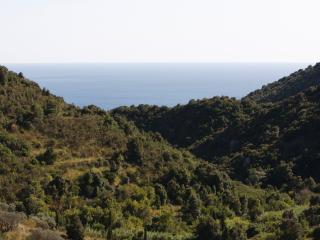 Argentario - Porto Santo Stefano vacation rentals