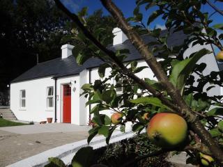 Sally's Garden Cottage - Warrenpoint vacation rentals