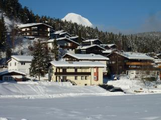 Haus Jonghof-3 bedrooms - Seefeld vacation rentals