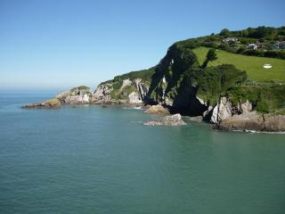 Cottage - Combe Martin vacation rentals