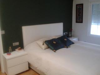 APARTMENT IN VALENCIA CITY - Valencia vacation rentals