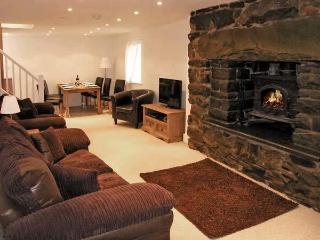1 Bron Haul - Trawsfynydd vacation rentals