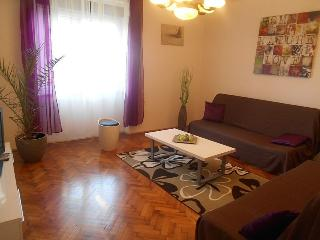 Cosy!Everything in the near ! - Lika-Senj vacation rentals