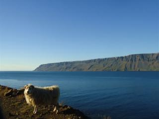 Núpur - Iceland vacation rentals
