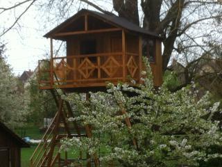 cabane perchée dans un arbre - Bas-Rhin vacation rentals