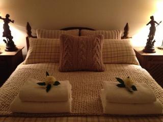 Snowdonia Snug Self Cater/B&B Style Accommodation - Dolgellau vacation rentals